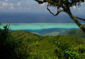 Hiking at Tefarerii, Huahine Iti / Lunch included - Full Day, moderate level