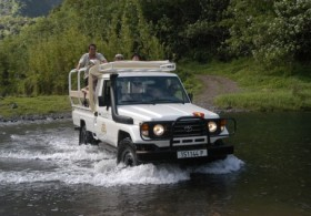 Mountain 4WD Safari Full Day - (Lunch not included)